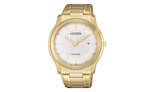 Citizen Eco-drive - Herre ur i double med lænke (12/20)