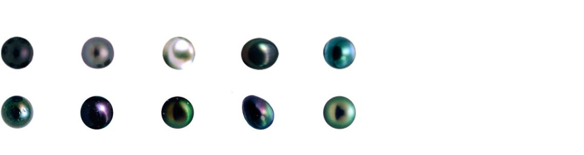 Perle glans